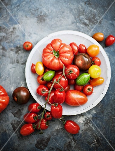 Assorted tomato varieties in a bowl