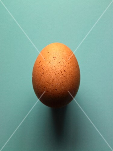 A brown egg from a Sulmtaler hen
