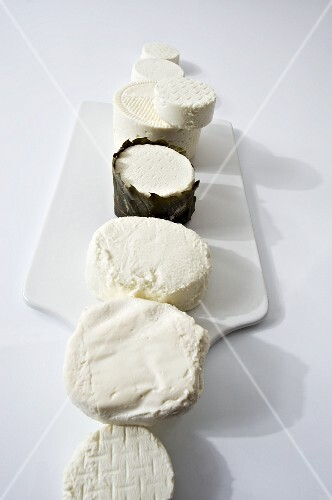 Assorted types of fresh goat's cheese laid out in a row