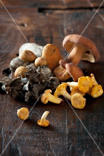 Assorted mushrooms on a wooden surface