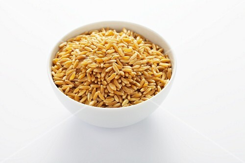 Kamut grain in a white bowl