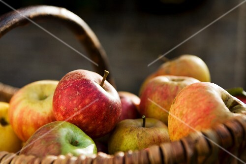 Autumn apples in a basket
