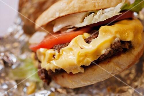 Cheeseburger; Close Up