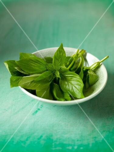 Fresh basil in a bowl