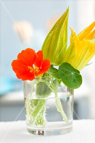 Nasturtiums and courgette flowers in a water glass