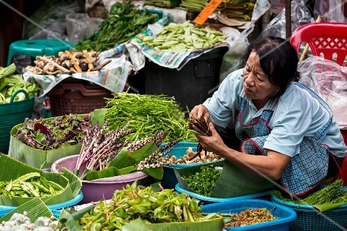 Woman selling herbs and vegetables at the market, Phayao, northern Thailand
