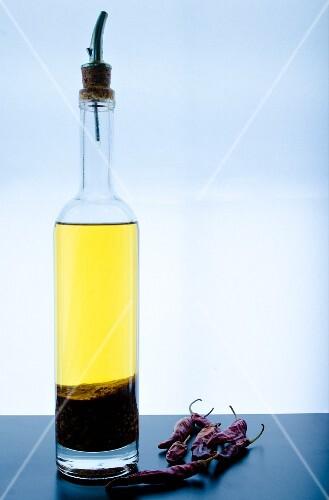 Prawn and chilli oil (Asia)