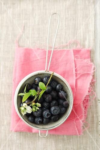 Blueberries in a sieve