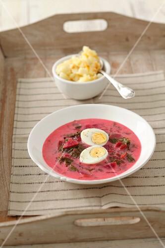 Botwinka (Polish beetroot soup) with egg