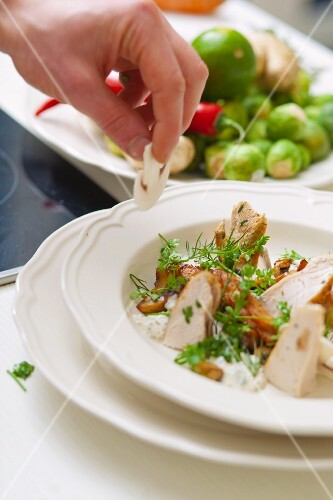 Fricassee of chicken breast with mushrooms, fennel tops and parsley