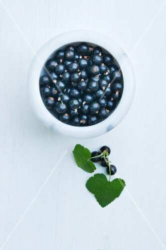 Blackcurrants in a marble bowl (view from above)