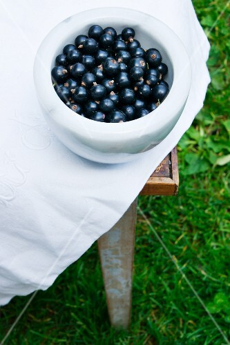 Blackcurrants in a marble bowl on a table outdoors