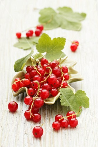 Redcurrants with leaves in a leaf-shaped bowl