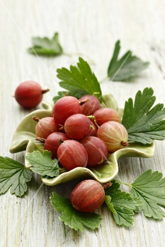 Gooseberries with leaves and a green bowl