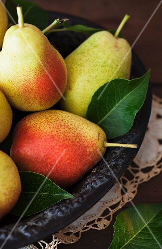 Pears with leaves in a bowl
