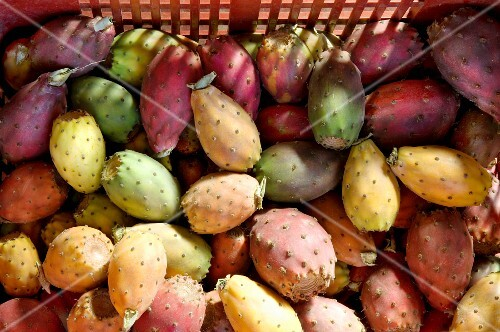 Prickly pears in a crate