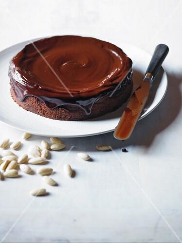 Chocolate cake with chocolate icing