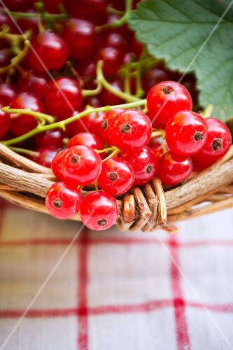 Redcurrants in a basket (close-up)