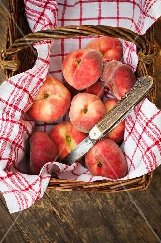 A basket of vineyard peaches