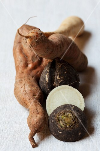 Assorted root vegetables, organically grown
