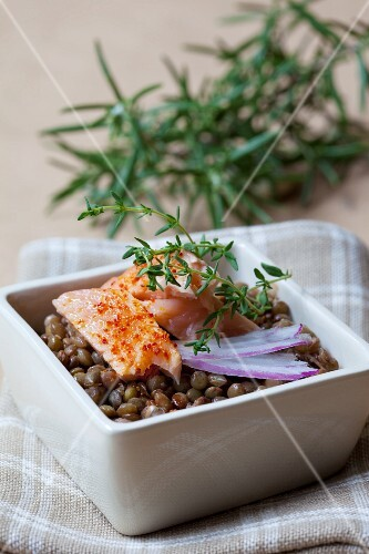Salmon with chilli, thyme and rosemary on brown lentils