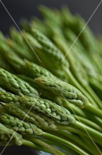 Green wild asparagus (close-up)