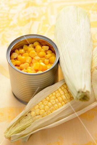 A cob of corn and tinned sweetcorn