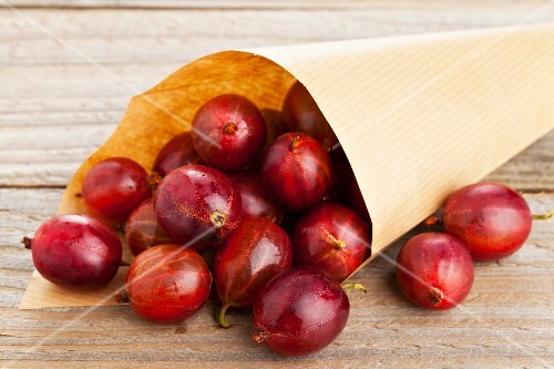 Red gooseberries in a paper cone