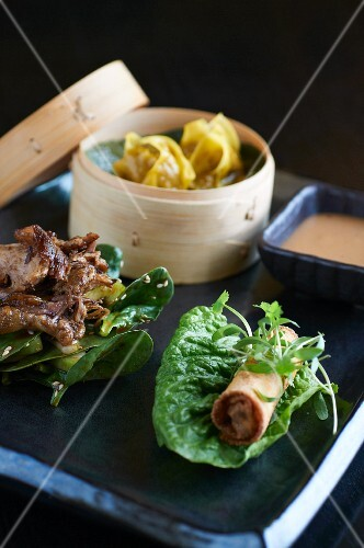 Roast duck, a spring roll and dim sum (China)
