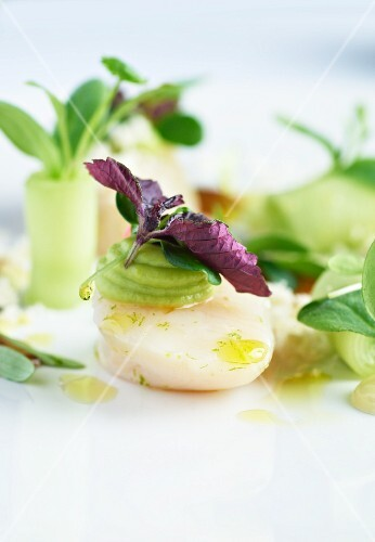 Scallops with lamb's lettuce and shiso (close-up)