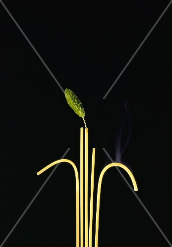 Five steaming strands of spaghetti and a sage leaf against a black background