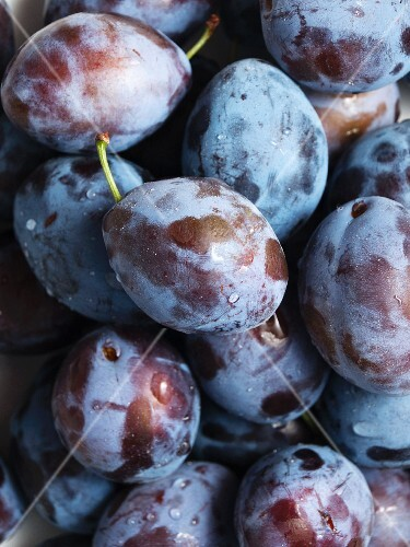 Fresh plums with water droplets, from above