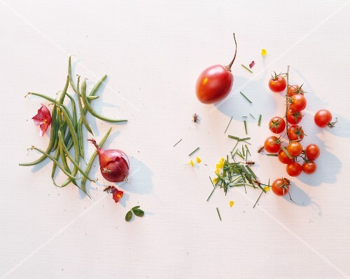 Beans, onions, tomatoes and tamarillo against a white background