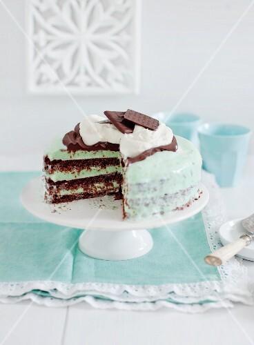 Chocolate and mint ice cream gateau on a cake stand