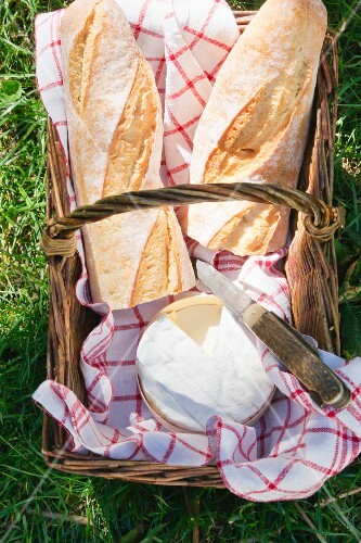 Baguettes and Camembert in a picnic basket in a field (seen from above)