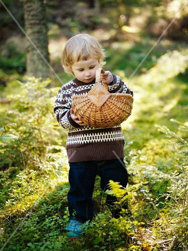 A girl picking mushrooms in the forest, Sweden