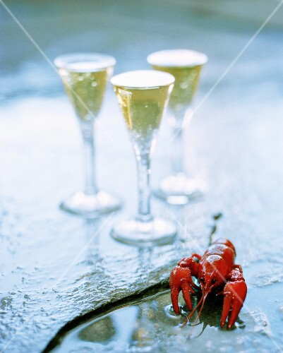 Boiled crayfish and three glasses of schnapps