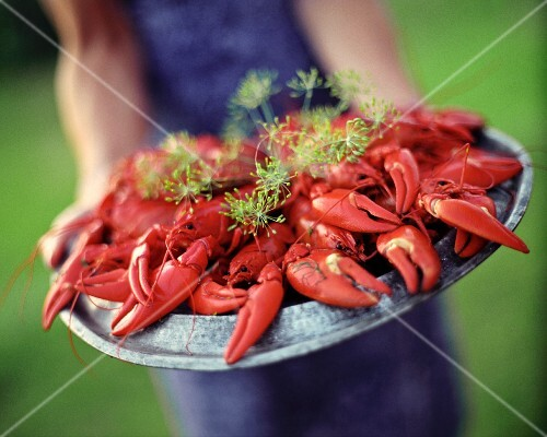 A person holding a pewter plate with lots of boiled crayfish