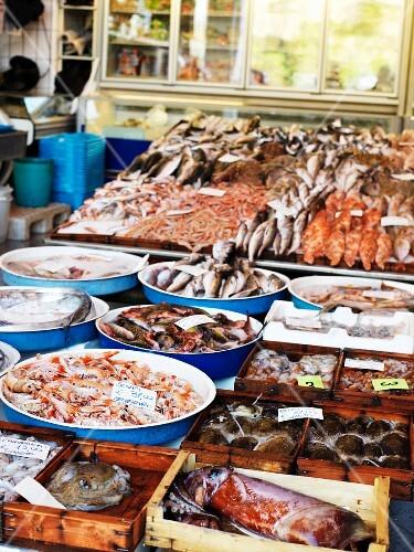 A fish market in Amalfi, Italy