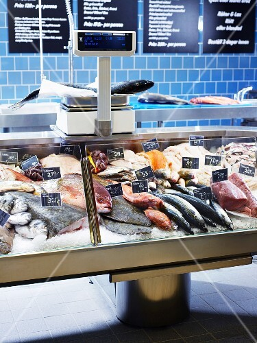 A fish counter with fresh fish