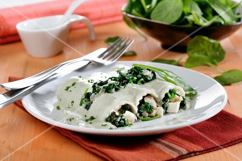 Cannelloni of spinach, cheese sauce gorgonzola Burgos