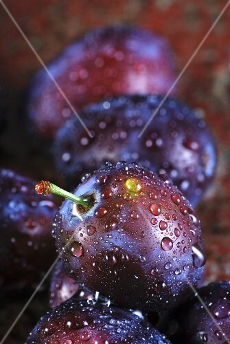 Plums with water droplets (close-up)