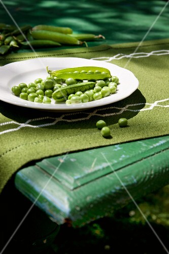 Peas (organic), partly podded, with whole pods on a plate and on a table