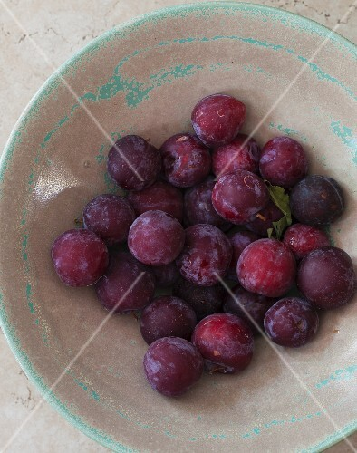 Plums in a ceramic bowl