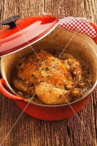 Chicken braised in cider