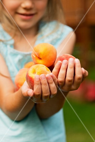 A young girl holding fresh peaches
