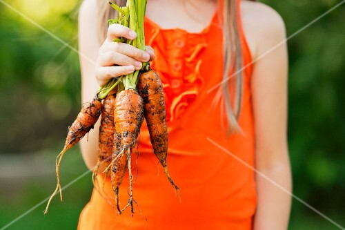 A girl holding carrots