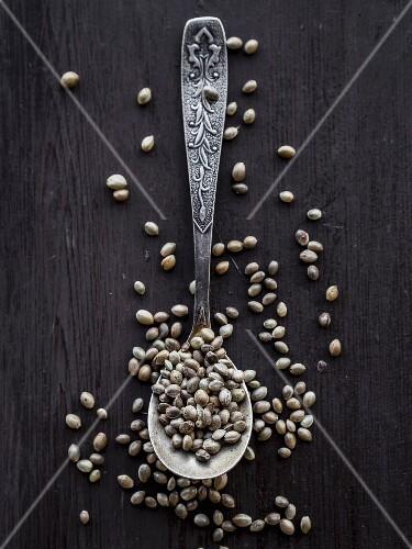 Cannabis grains on a teaspoon.