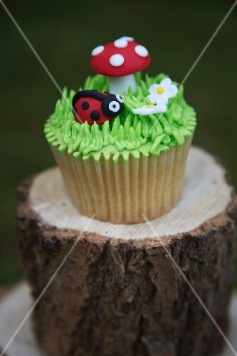 A cupcake decorated with a ladybird and a toadstool