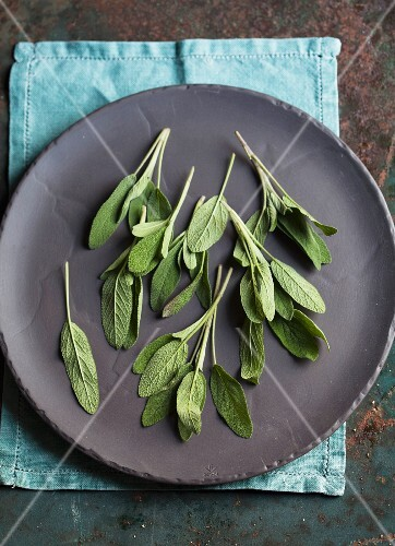 Fresh sage leaves on a plate (view from above)